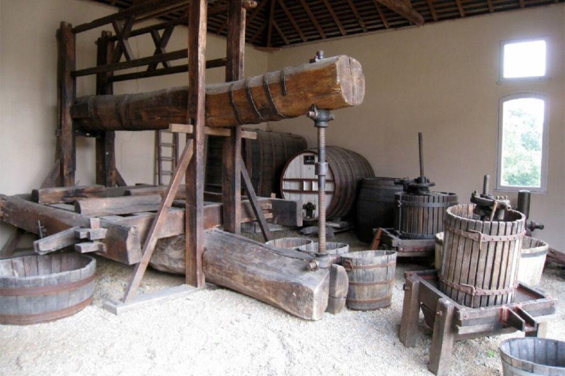 musée vin saint lambert du lattay - scénographie